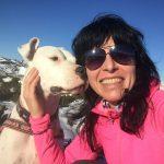 Leinenlos Hundetraining